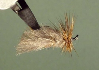 TIER WING LUB CDC DANCING CADDIS