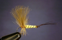 REVERSED MAYFLY